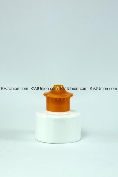 PC81J-28410-(1)